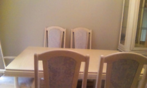 Accese Brother 11 piece dining room suite