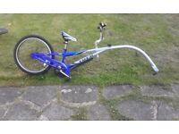 Bicycle tag (trek)