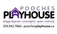 Pooches Playhouse Cage Free Boarding