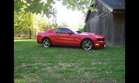 RARE! 2010 Ford Mustang GT Coupe/Navigation/Glass Roof