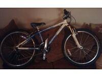 Pinnacle Aura 24 bicycle