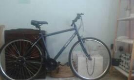 Unisex apollo bike