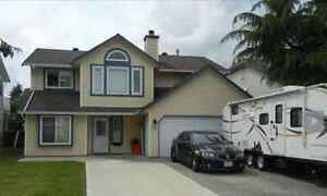 Maple Ridge - Bright 5 Bedroom House