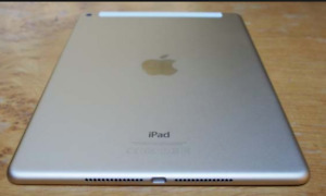 MINT    IPAD  AIR     1 16GB PLUS LTE 3 MONTHS OF WARRANTY $225