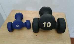 10 LBS  + 3 LBS  sets Dumbell weights
