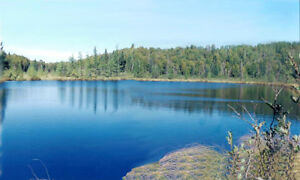 One of a Kind! 160 ACRES & Log Cabin & Private Spring Fed Lake