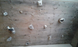 Climbing wall with holds