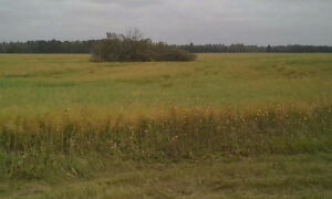 Acreage For Sale