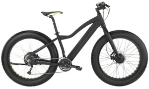Easy Motion Big Bud AWD Electric Bicycle - Must Go