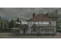 Kitchen porter - Gastro pub - Chorleywood - Live in + Tips