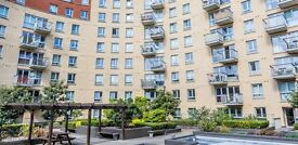 Stunning 2 bed, 2 bath apartment in a private development with concierge and gym onsite - Holloway!