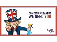 Brentwood based Domestic Cleaner - Hours to suit most circumstances - Competitive hourly rate