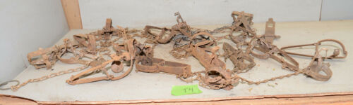 20 vintage traps collectible trappers tool cabin rustic display lot T4