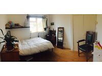 Beaut double bedroom - 1 week sublet - shorter or longer stay negotiable :)