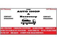 Mobile car technician