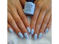 £20 Shellac Manicure Offer, plus 20% Off on Manicure & Pedicure our Pimlico, Westminster Salon