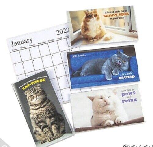 2022-2023 Fat Cat 2 Year Planner Pocket Calendar *FREE SHIPPING*