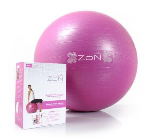 Bosu Ball Air Pump: Balance Ball