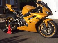 Immaculate Low Mileage Triumph Daytona 675 Scorched Yellow