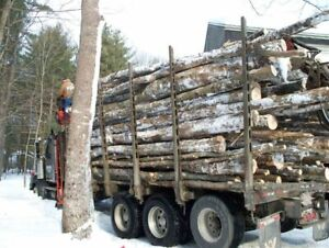 AL`S FIREWOOD 8FT LOGS $130  902-449-0009
