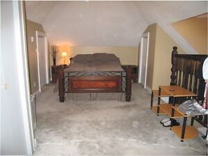 One bedroom plus den - downtown - clean - quiet - large
