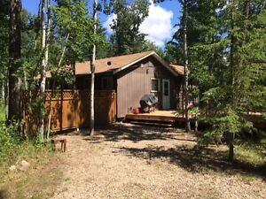 Good Spirit Lake: Cabin for Sale