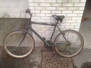 Large and Tall Raleigh bike 15 speed