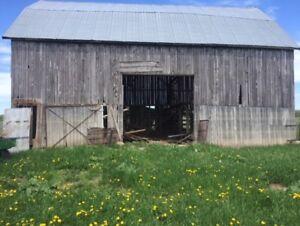 Barn Boards, large barn