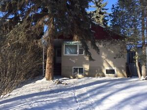 4 bedroom single house close to university and whyte ave