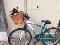 Girls Bike with basket
