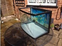 fish tank with curved front