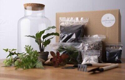 Terrarium Kit - With Plants