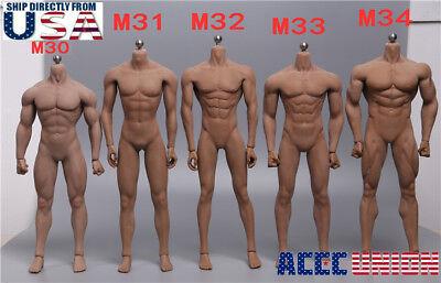 PHICEN TBLeague 1/6 Scale Steel Skeleton Male MUSCULAR SEAMLESS FIGURE Body USA (Toy Skeleton)