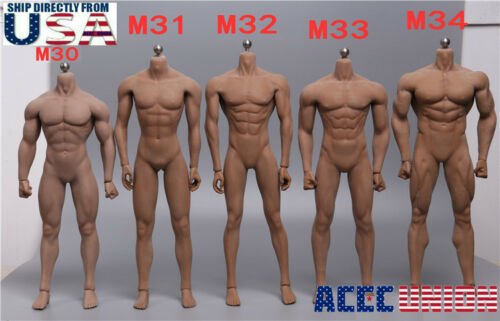 PHICEN 1/6 Steel Skeleton Male Muscular Seamless Body M30 M31 M32 M33 M34 M35