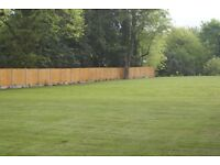 Fencing, Garden Fencing, Fencing Services, Tree Surgeon, Garden Clearance, Tree Work, Hedge Cutting