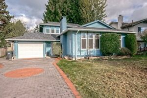 Entire house for rent in Port Coquitlam. Available now