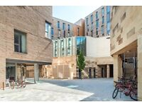 UoE Holyrood North Residence Hall - Single Room (For UoE Postgraduate Students Only)