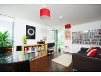 Modern Luxury stylish one bedroom apartment with study and private balcony in Clapton E5