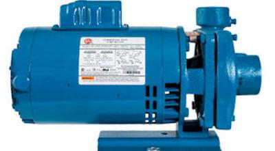 New Burks Circulation Pump 10g5-1-14 115-230v 1 Hp