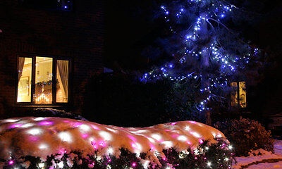 Outdoor Christmas Lights - Which Are Best to Use?