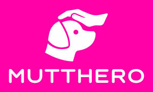 MuttHero Dog Walking Service