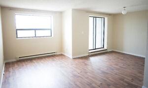 Newly renovated 1 bedroom condo
