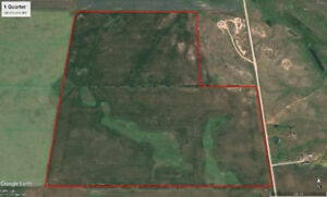 139.74 Acres Farmland For Sale Pangman, SK RM of Norton #69