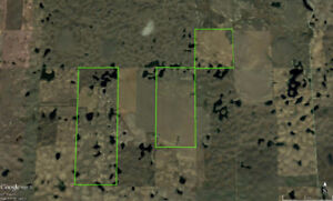 6 Quarters Grain Land West Of Ogema RM of Excel #71