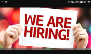 Help wanted at busy concession stand in guelph area