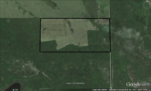 RM of Torch River-Good Soil-Good Price
