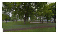 Great Find! 13,068 Sq. Ft Treed Residential Lot in Bothwell