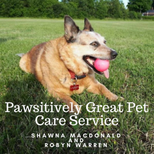Pet care service for dogs, cats and exotics