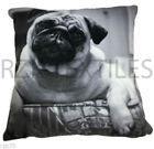 Pug Decorative Cushion Covers