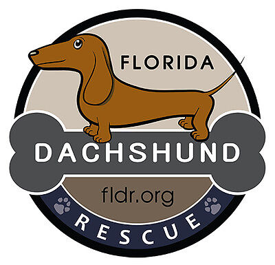 Florida Dachshund Rescue INC